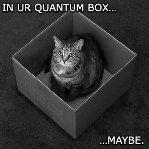 Schrödinger\'s LoL cat